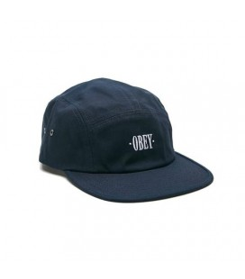 Obey perspective 5 Panel